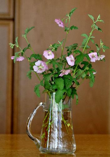 アニソ花瓶1wb.jpg