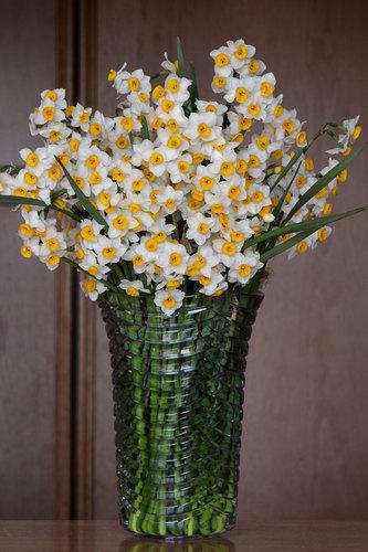 スイセン花瓶1wb.jpg