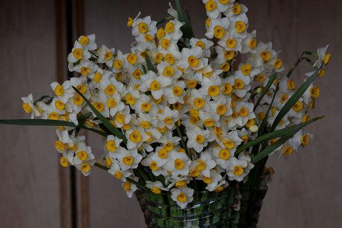 スイセン花瓶2wb.jpg