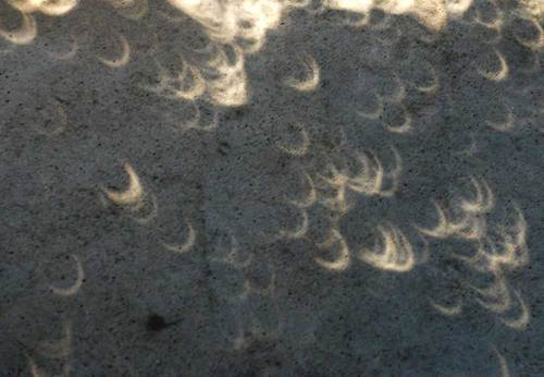 皆既日食0738wb2.jpg