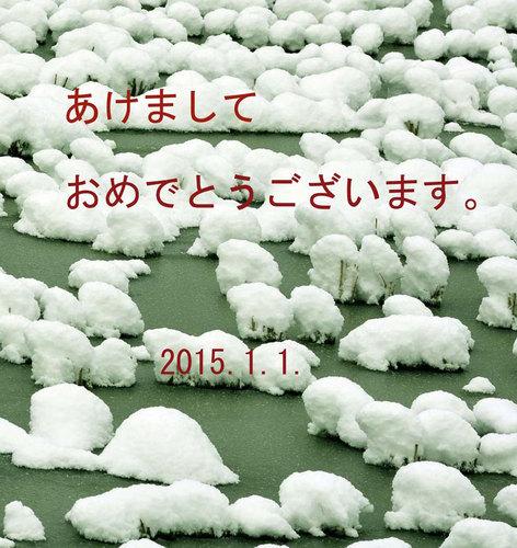 雪の田んぼ年賀状wb.jpg