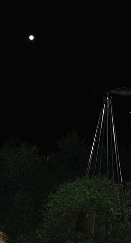P満月2wb.jpg